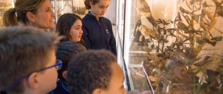 Museo colegio concertado Urdaneta