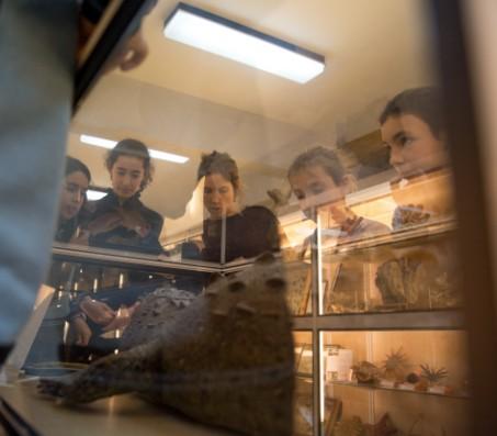 Museo de Historia Natural Urdaneta